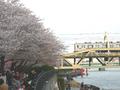 Sumida park.PNG