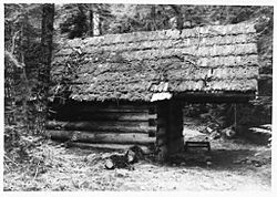 Swamp Meadow Cabin east.jpg