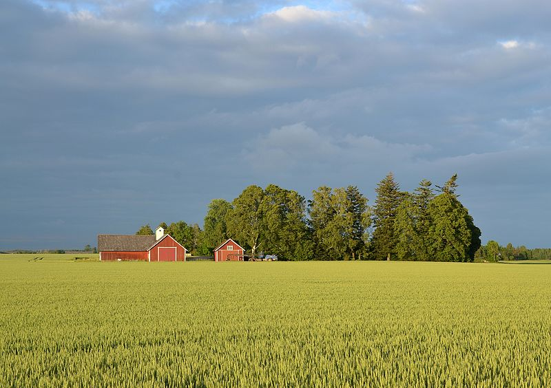 File:Swedish landscape near Mjölby (by Pudelek) 02.jpg