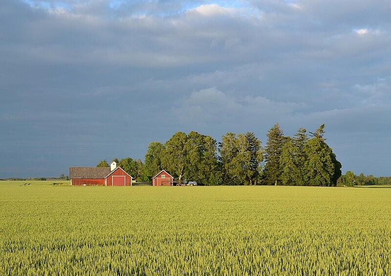 Datei:Swedish landscape near Mjölby (by Pudelek) 02.jpg