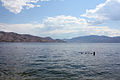 Swimmers in Peachland.jpg