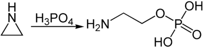 Synthese von Phosphoethanolamin