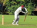 Takeley CC v. South Loughton CC at Takeley, Essex, England 091.jpg