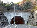 Tamano Tunnel.jpg