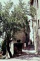 Tarn Penne - panoramio (1).jpg