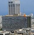Tel Aviv duck2.jpg