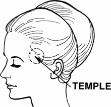 Temple (anatomy) (PSF).png