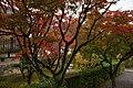 Tenryu-ji (3262601686).jpg