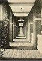 The Briar patch (1915) (14763185985).jpg