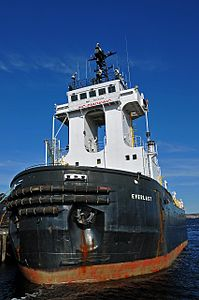The Everlast, a specialty Tug.jpg
