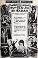 The Hoodlum (1919) - 9.jpg