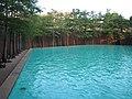 The Quiet Pool - panoramio.jpg