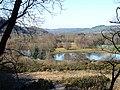 The Rheidol Valley - geograph.org.uk - 695911.jpg