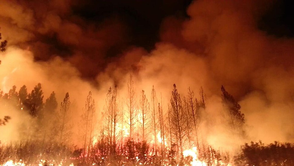 The Rim Fire in the Stanislaus National Forest near in California began on Aug. 17, 2013-0004