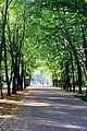 The arboretum - panoramio (2).jpg