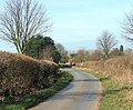 The lane into Waterstock - geograph.org.uk - 717108.jpg