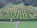 The maze at Traquair - geograph.org.uk - 492940.jpg