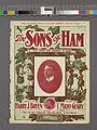 The sons of Ham (NYPL Hades-1933974-1999256).jpg