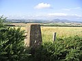 The trig point at 211m at Belsesmoor - geograph.org.uk - 246256.jpg