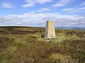 The trig point at Millstone Edge - geograph.org.uk - 548148.jpg