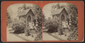 The well, from Robert N. Dennis collection of stereoscopic views.png