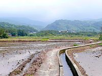 Tianliaoyang.JPG
