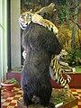 Tiger and bear, Arsenev Regional History Museum (Vladivostok, 2004).jpg