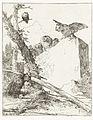 Titelprent voor Scherzi di fantasia met uilen bij een steen.jpeg