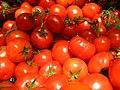 Tomatoes (4701303178).jpg