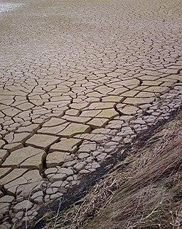 Top mud - Wallasea wetlands - geograph.org.uk - 337460