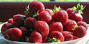 http://upload.wikimedia.org/wikipedia/commons/thumb/a/a6/Truskawki.jpg/180px-Truskawki.jpg
