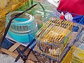 Turtle in basin and rodents for sale from back of bike along Fuzhou Road, Shanghai.jpg