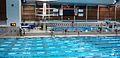 Txla swim race.jpg