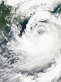 Typhoon 17W (Damrey) 200509230530.jpg