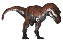 Tyrannosaurus wikipedia thermoregulation altavistaventures