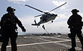 US Navy 100707-N-7058E-799 Members of a U.S. Coast Guard Maritime Safety and Security Team watch as a fellow Coast Guardsman fast-ropes onto the flight deck of USS Freedom (LCS 1).jpg