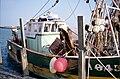 Un chalutier de pêche côtière (11).jpg
