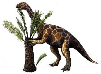 Unaysauridae - Restoration of Unaysaurus