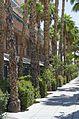 University of Arizona, Tucson, Arizona - panoramio (3).jpg