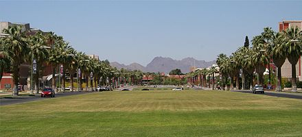 The University of Arizona (the Mall) in Tucson University of Arizona mall.jpg