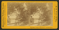 Up river from Elm Street, Skowhegan, by S.S. Vose & Co..png