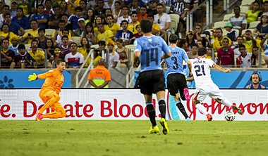 Uruguay - Costa Rica FIFA World Cup 2014 (15).jpg