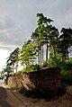 Ust-Narva-10.jpg