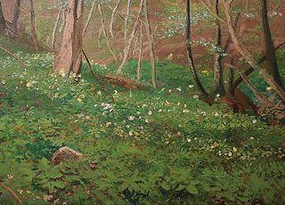 Frühling im Wald bei Aumühle