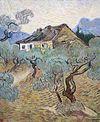 Van Gogh - Weißes Bauernhaus zwischen Olivenbäumen.jpeg