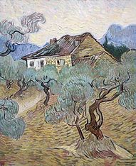 The white cottage among the olive trees