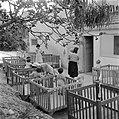 Verzorgsters en peuters in boxen bij de kinderopvang van kibboets Kiwath Brenner, Bestanddeelnr 255-0565.jpg
