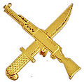 Vietnam Infantry symbol.jpg
