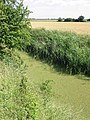 View SW across farmland and Whitfield Sewer - geograph.org.uk - 489255.jpg