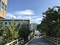 View in Hakozaki Campus of Kyushu University 4.jpg